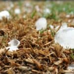 Roof Hail Damage: Tips for Homeowners